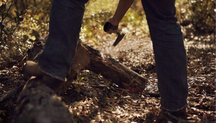 Drvoseča stradao u šumi kod Žagubice