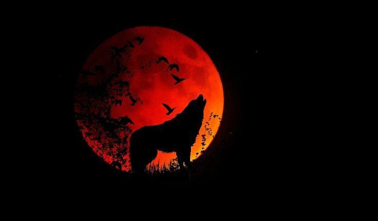 Večeras se na nebu moćan vučiji Mesec