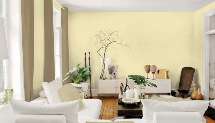 Pet boja za veseliji dom