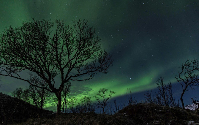 Noć magije – Najmračniji dan u godini
